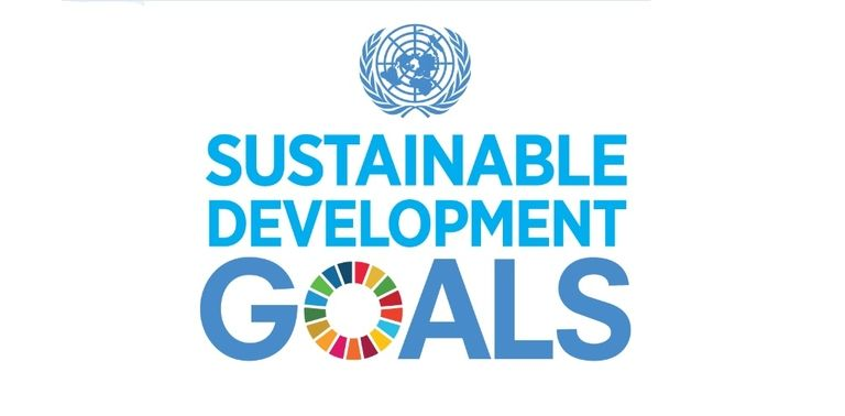 Pirelli among founders of CFO taskforce for sustainable development