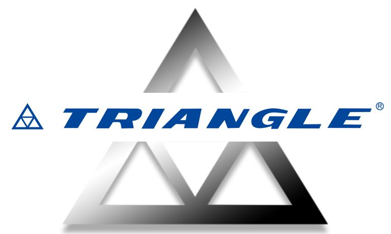 Mid-year Report: New Triangle CEO says OTR, TBR demand high